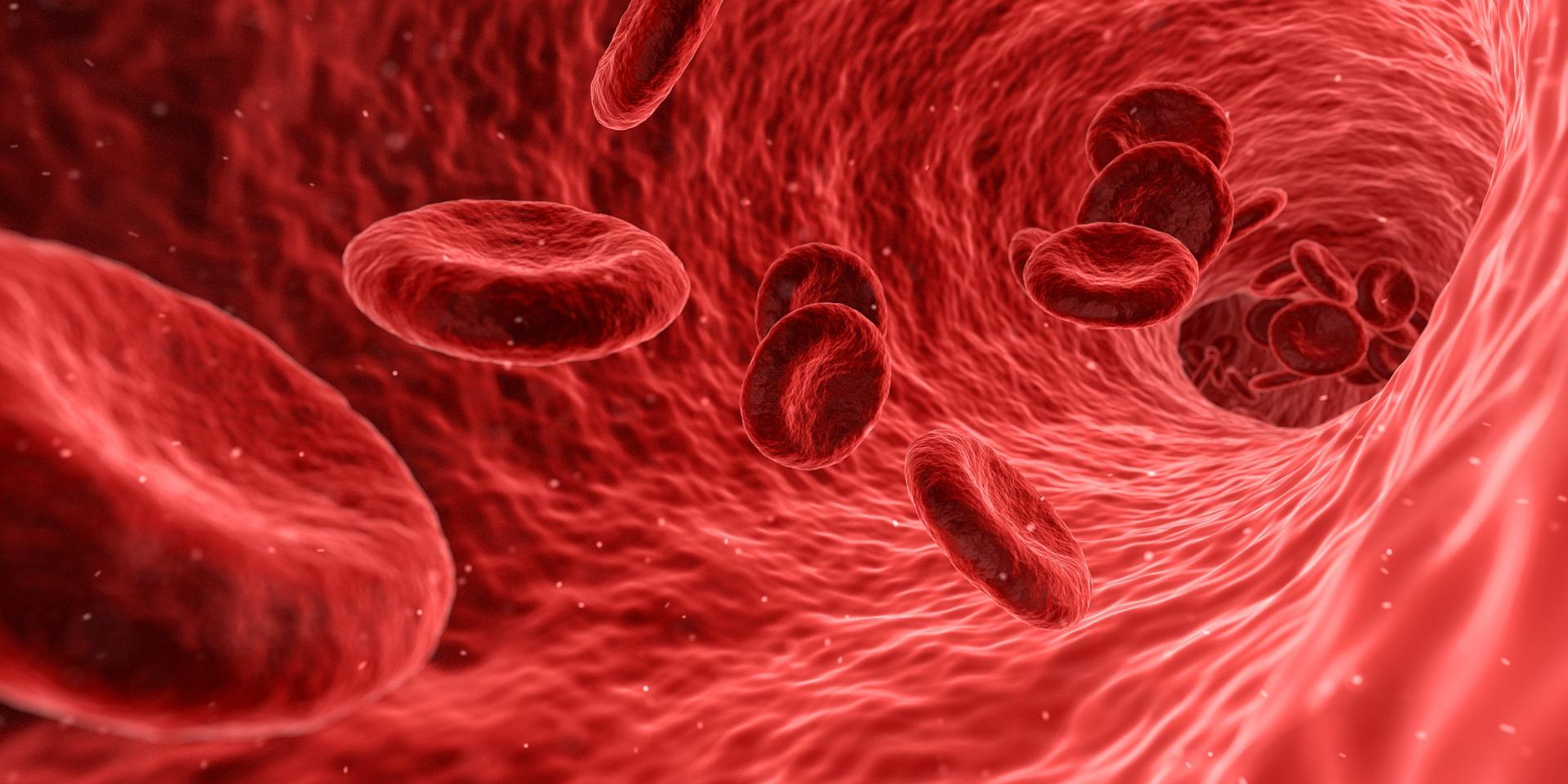 Irrigação sangüínea do cérebro e demência