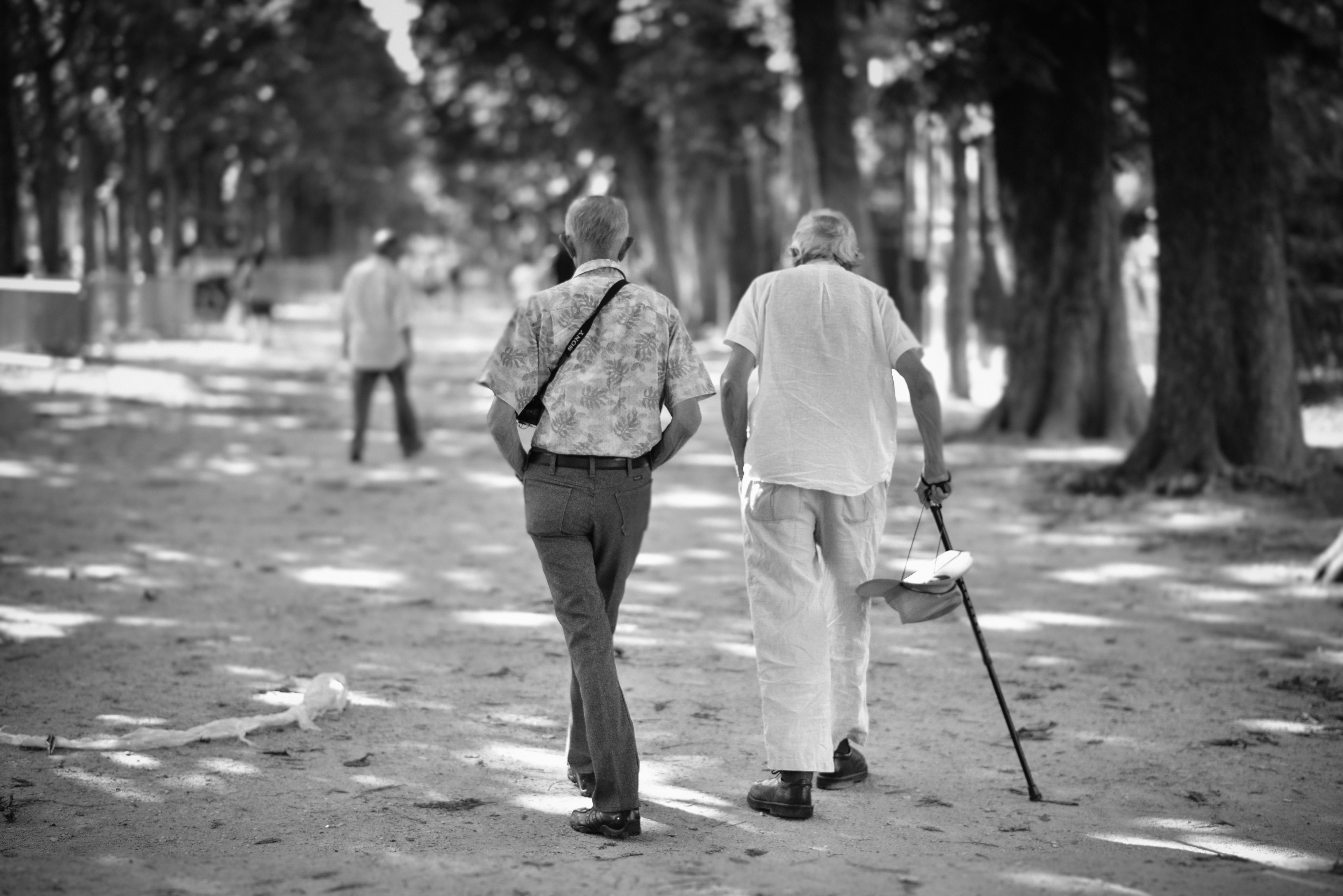 Envelhecimento e postura
