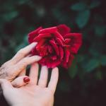 Saúde Social do Cuidador de Idosos