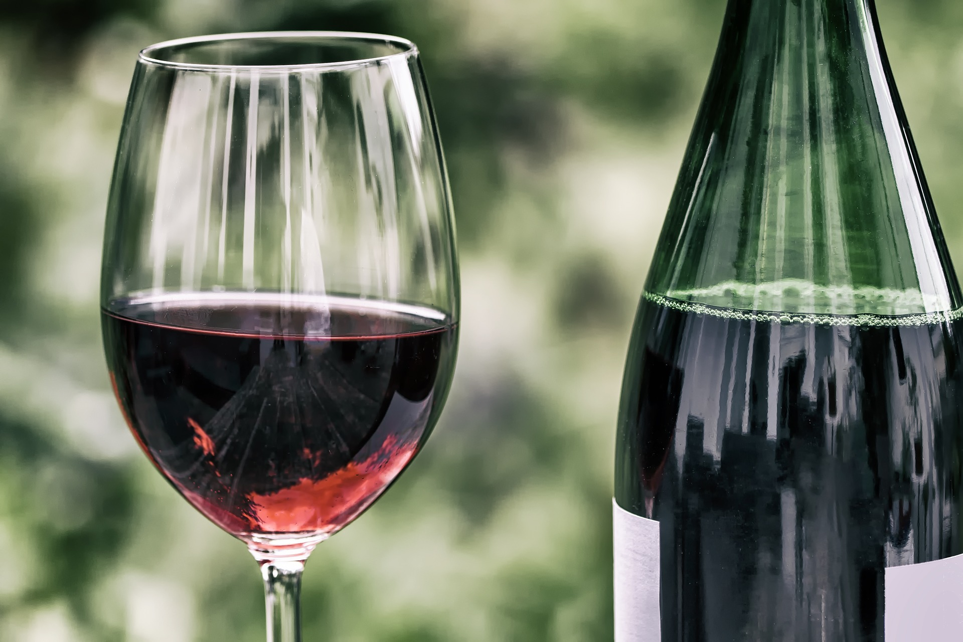 idoso pode tomar vinho