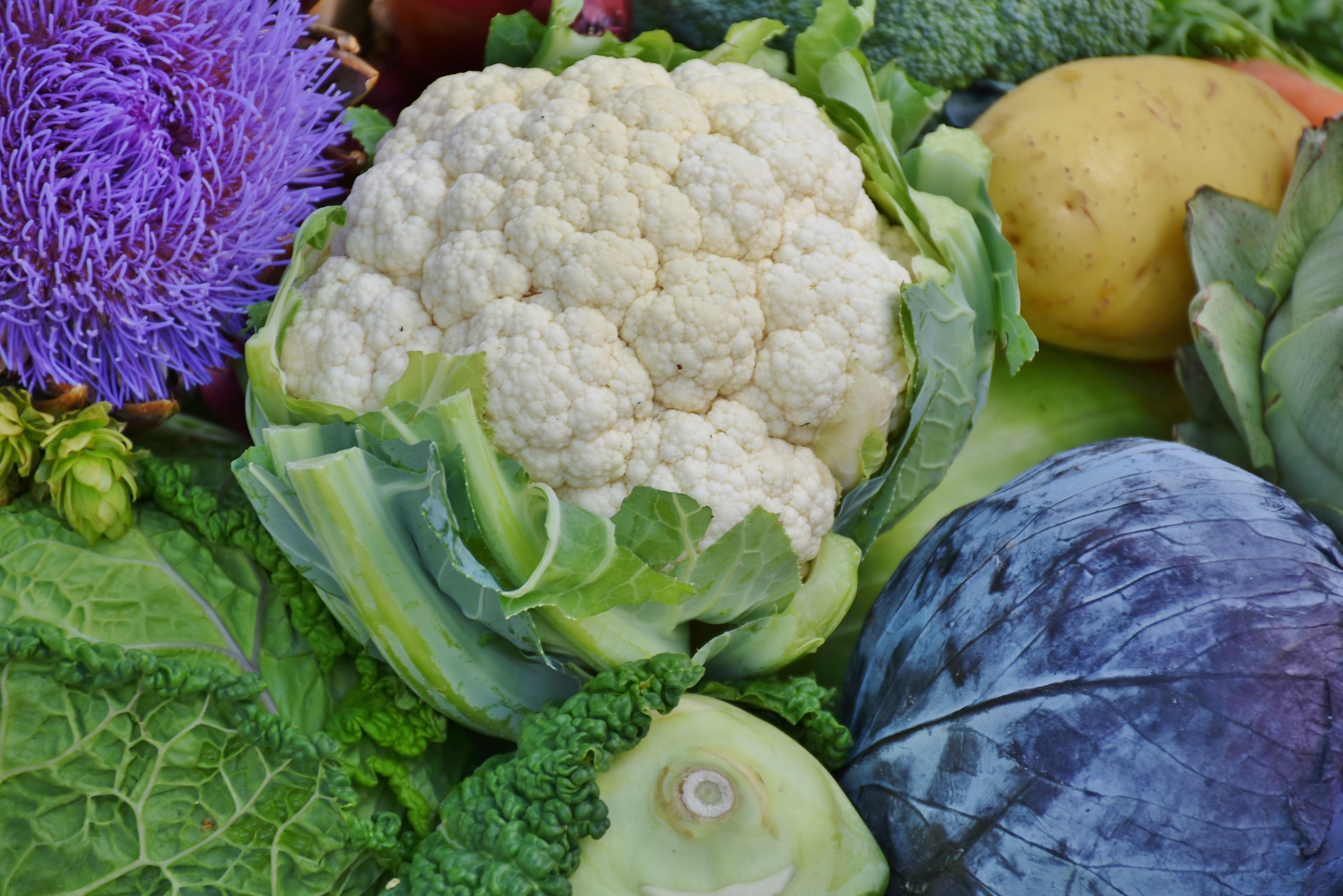 Idoso precisa comer brócolis com Glicosinotaltos