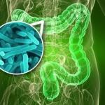 idoso e dificuldades com intestinos