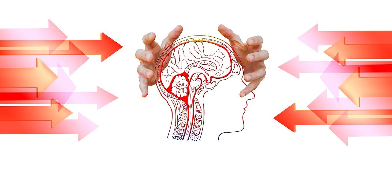 terceira idade e Fontes internas de estresse