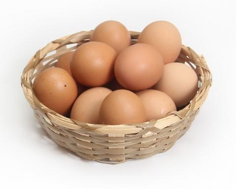 terceira idade comer ovos